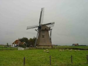 Nederland2
